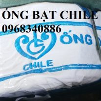 Ống bạt Chile